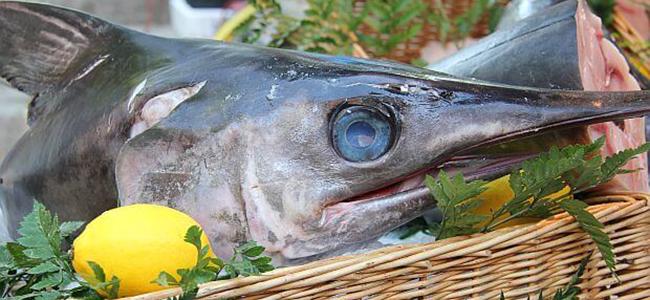 Cibi da evitare durante la gravidanza pesce ad alto contenudo di mercurio