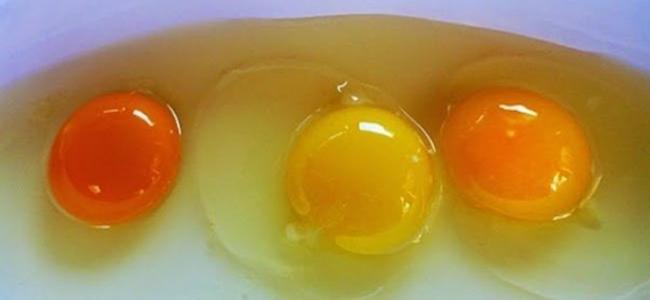 Cibi da evitare durante la gravidanza uova crude